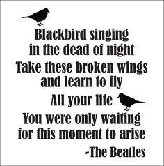 best beatles song lyrics - Google Search