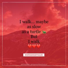 I walk.... I walk ... to maintain my BS, BP & HR ... I walk to lose weight, maintain my labs & to strengthen my heart.   I WALK!!