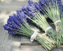 Lavender bouquets. It's worth consideration. Especially since you can dry and smell them all year long.