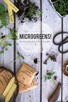 Earthsprout Guide   Grow Your Microgreens!
