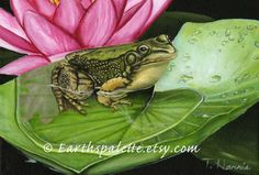 Paintings of frogs  8x10 print from original oil painting