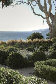 A Mediterranean Idyll on the Pacific Palisades Gardenista. Seaside Garden, Coastal Gardens, Beach Gardens, Outdoor Gardens, Landscape Design, Landscape Architecture, Garden Design, Landscape Grasses, Plant Design