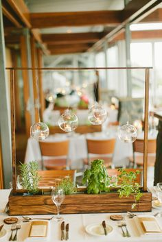 Herb centre pieces  http://www.polkadotbride.com/2012/07/whimsical-lavender-and-green-queensland-wedding/