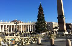 Az idei évben Bajorországból érkezett a Vatikán karácsonyfája. Idén egy gyönyörű szép 32 méter magas vörösfenyőt választottak, amelyet a szállítás miatt 25 méteresre vágtak. Dolores Park, Louvre, Building, Travel, Viajes, Buildings, Destinations, Traveling, Trips