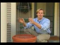 How to make your own Christmas tree for your front porch - not crazy about the video but  great idea!