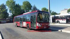 Bus Cotral storici: Un patrimonio da salvaguardare