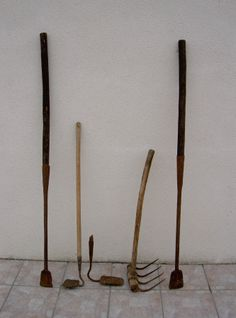 Outils à goémon à Plozévet