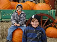 75 Fall Activities for Los Angeles Kids