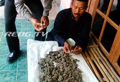 Warga Kauman Heboh Penemuan Ratusan Keping Uang Kuno