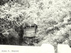Alex photograph project: Train...