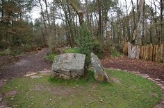 Merlin's Tomb in the forest.