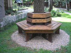 Скамейка вокруг ствола дерева