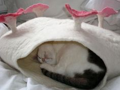 German Artist Susanne Karg makes fabulous and fanciful beds for cats from felted wool!
