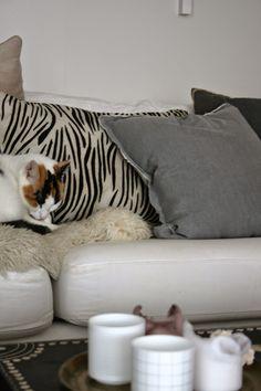 Frydelig og fint: Et lite livstegn. Animal Print Rug, Throw Pillows, Living Room, Rugs, Home Decor, Cushions, Homemade Home Decor, Decoration Home, Decorative Pillows