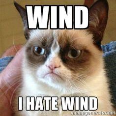 I hate wind.