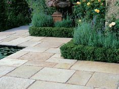 We really like the colour and texture/finish of this limestone paving and the fact that the slabs are of different sizes (but not crazy paving). Cottage Front Garden, Limestone Patio, Crazy Paving, Garden Paving, Coastal Gardens, Australian Garden, Paving Stones, Backyard Projects, Natural Stones