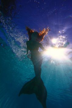 Beautiful Twig the Fairy Mermaid
