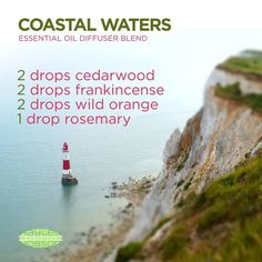 I love the smell of the ocean! And this essential oils diffuser blend brings the feeling of being on the coast right to you. Cedarwood's warm and woody scent evokes feelings of wellness and vitality. Frankincense promotes feelings of peace, relaxation, satisfaction, and overall wellness, while providing a warm and spicy aroma. Wild Orange releases a fresh, sweet, energizing aroma while also purifying the air. Rosemary can reduce nervous tension and occasional fatigue. www.hayleyhobson.com