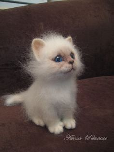 Inspiration: felted kitten by Anna Petinati. What!? I thought this was a real kitten at first. A master for sure.