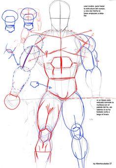 Anatomia de Dragon Ball by albertocubatas on DeviantArt
