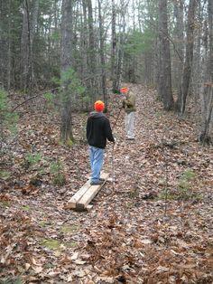 Center Pond Preserve - Maine Trail Finder