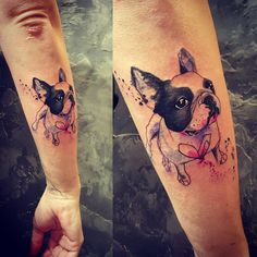 Boston terrier tattoo on arm Cat And Dog Tattoo, Dog Tattoos, Animal Tattoos, Sexy Tattoos, Body Art Tattoos, Small Tattoos, Sleeve Tattoos, Tiny Tattoo, Tattos