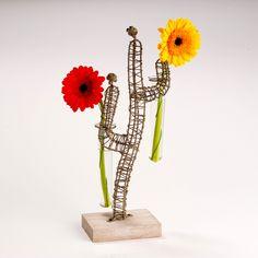 soliflore cactus