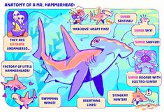 Astral Requin — Anatomy of the most shy shark of seas ~ Arte Com Grey's Anatomy, Anatomy Art, Animal Drawings, Cute Drawings, Shark Art, Cute Shark, Marine Biology, Mo S, Sea Creatures