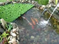 ▶ estanque artificial con base de rocas de rio - YouTube