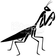 vector praying mantis in black and white royalty-free stock vector art