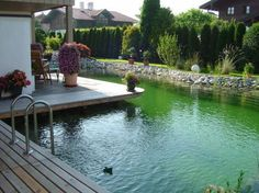 relax schwimmteich natural pool How To Choose Curtains Or Blinds For Your Natural Swimming Ponds, Natural Pond, Swimming Pools Backyard, Outdoor Pool, Outdoor Gardens, Pond Landscaping, Backyard Water Feature, Dream Pools, Cool Pools