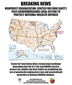 Center for Food Safety filed a formal legal challenge yesterday demanding that the U.S. Fish and Wildlife Service protect our wildlife and their habitat by prohibiting the use of genetically engineered crops and neonicotinoid pesticides in National Wildlife Refuges. PEER - Public Employees for Environmental Responsibility, Center for Biological Diversity, and Beyond Pesticides have all joined CFS ...See More