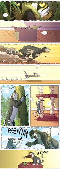 Cat imagination - 9GAG