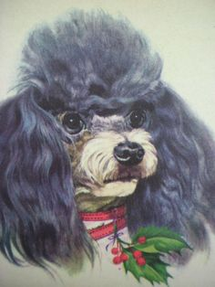 Christmas poodle#Repin By:Pinterest++ for iPad#