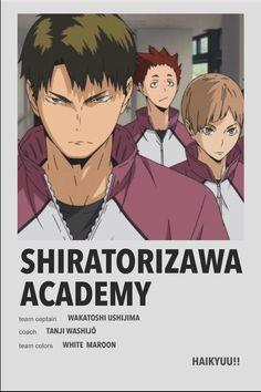 Haikyuu Karasuno, Haikyuu Anime, Poster Anime, Hiro Big Hero 6, Ushijima Wakatoshi, Anime Reccomendations, M Anime, Haikyuu Funny, Volleyball Anime