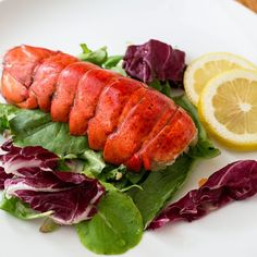 How to Reheat Precooked Lobster Grilled Lobster, Lobster Meat, How To Cook Lobster, Red Lobster, Lobster Recipes, Fish Recipes, Meat Recipes, Cooking Frozen Lobster Tails, Bbq Meat