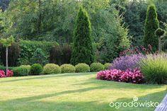 Organic Gardening And Farming Magazine Garden Cottage, Lush Garden, Shade Garden, Lawn And Garden, Lawn And Landscape, Garden Landscape Design, Small Space Gardening, Garden Spaces, Beautiful Flowers Garden