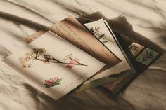 The Florist | Rosalianne