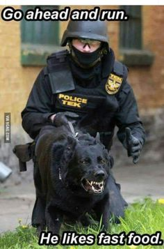 Not how real police think. Police help people very sick. Funny Shit, Funny Memes, Hilarious, Dog Memes, Dog Humor, Funny Stuff, Police Humor, Police Dogs, Funny Police
