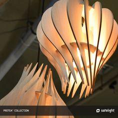 Protea Pendant Lighting Collection - Drop shape timber wood pendant lighting design