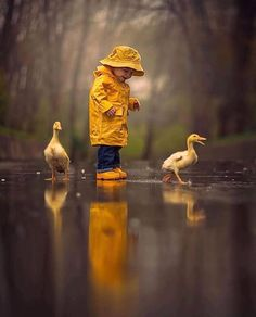70+ Awesome Shoot From Rain Photography Ideas
