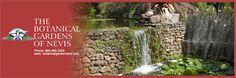 St. Kitts & Nevis - Botanical Gardens of Nevis