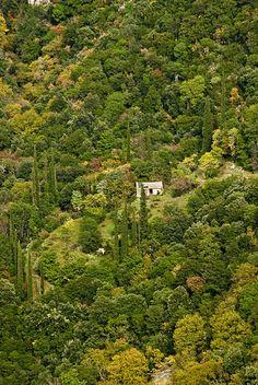 Manila mountain, Arcadia, Peloponnese, Greece
