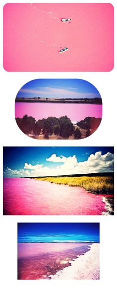 This is Lake Retba, or Lac Rose, as the French call it, located in Senegal.    The pink color is caused by algae, dunaliella salina. The algae turns pink during the dry season, making the whole lake appear milkshake pink. Like the Dead Sea, Lake Retba also has a high salt level, which makes you able to float in it.    Feeling the urge?  Hop on a plane to Dakar, and take a road trip to the Cap Vert peninsula.