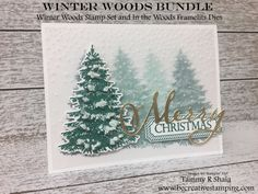 Winter Woods Stamp Set and In the Woods Framelits dies Christmas Cards 2018, Stampin Up Christmas, Christmas Images, Christmas Greeting Cards, Christmas 2019, Christmas Shadow Boxes, Wood Stamp, Winter Trees, Winter Cards