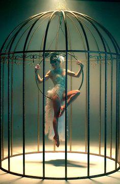 Bird in cage | Jam Entertainers Dubai | Entertainment Consultants ...