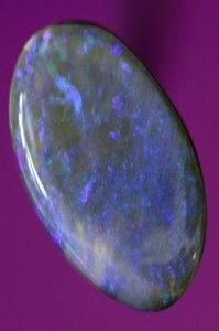 """Genuine Lightning Ridge solid opal. Visit the link to see the details. Use """"spring50"""" Coupon code to get 50% discount. Coupon code valid till 31 October 2013.For more details Contact us http://www.australianopalboard.com.au/contact-us/"""