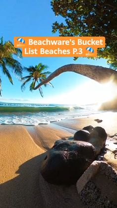 Vacation Places, Vacation Trips, Dream Vacations, Vacation Spots, Fun Places To Go, Beautiful Places To Travel, Mexico Destinations, Travel Destinations, Travel Things