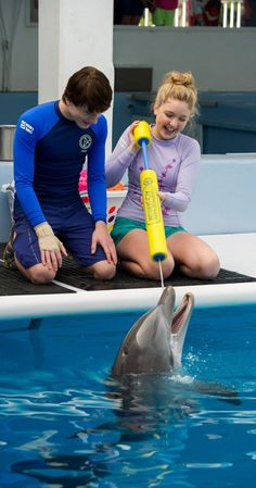 Dolphin Tale 2 (2014) >>> I didn't hear there was going to be a second one! Can't wait!!!