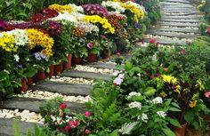 małe ogrody - Szukaj w Google